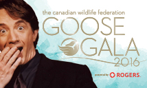 Goose gala 2016 banner with Martin Short