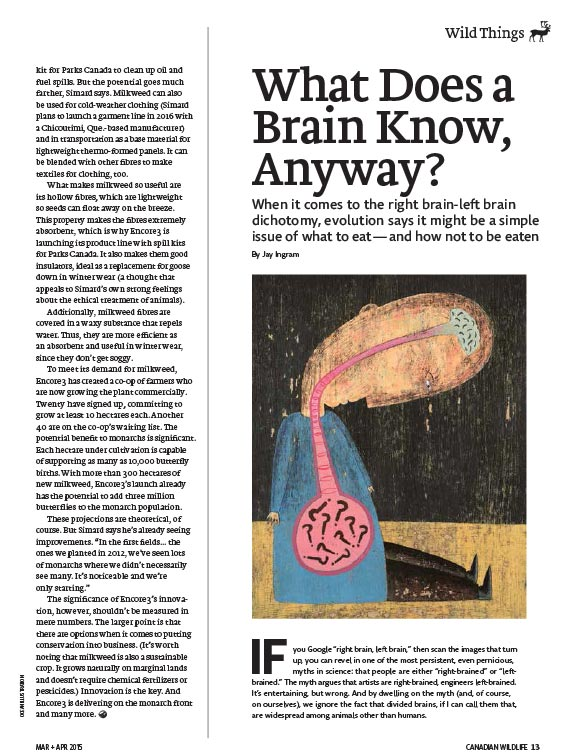 Article image with illustration of human and his brain