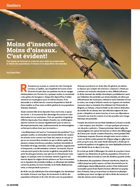 Article image with photo of bird eating a bug