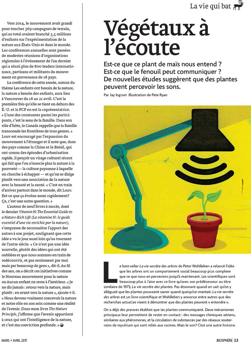 Article image with illustration of plant under a lamp