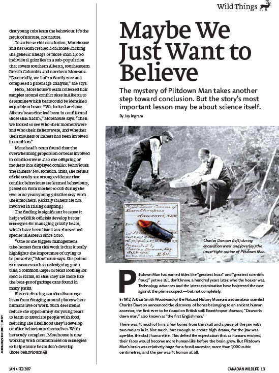 Article image with photo of architects finding evidence of Piltdown man