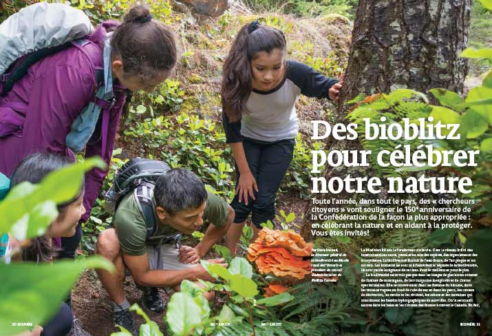 Article image with kids and adults looking at nature