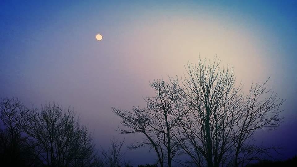 Moon in the winter sky