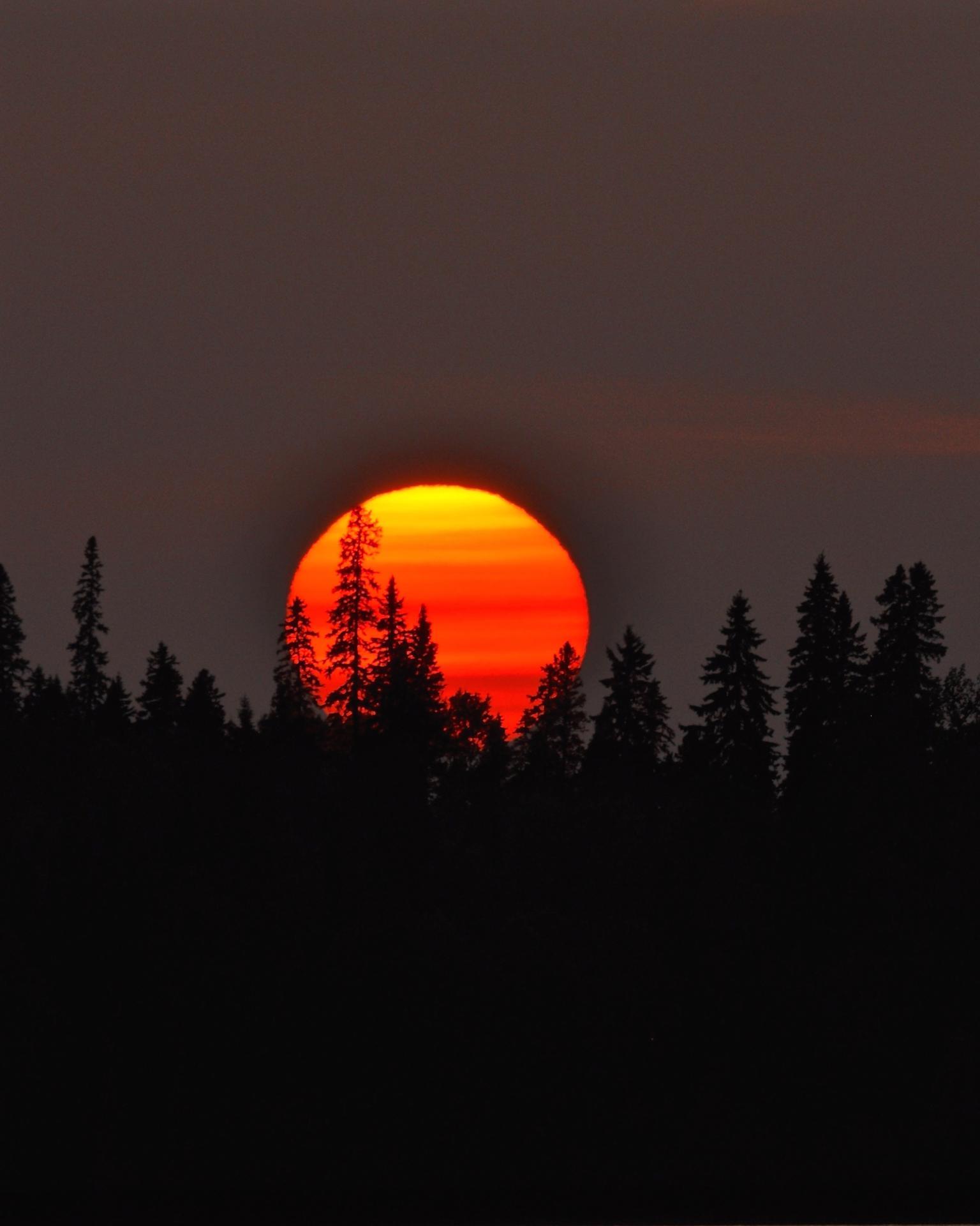 Orange moon rising