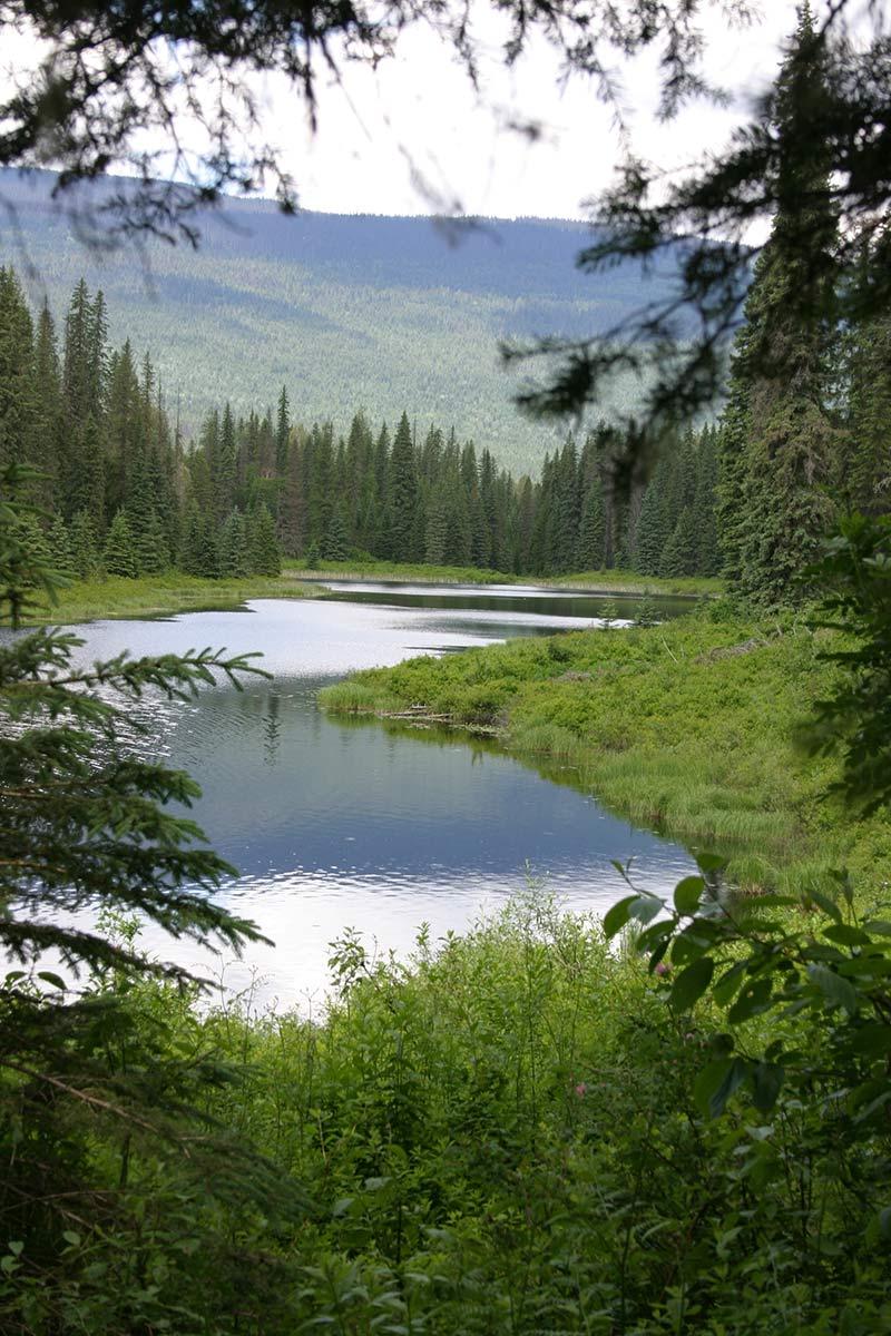 Alice Lake Provincial Park, BC