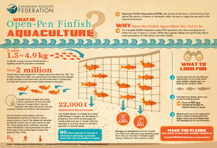 Aquaculture infographic