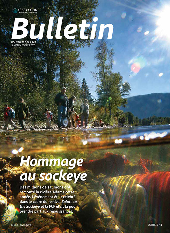 Bulletin cover with photo of salmon in a river