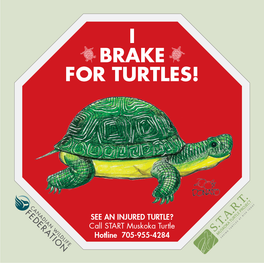 I Brake for Turtles sign