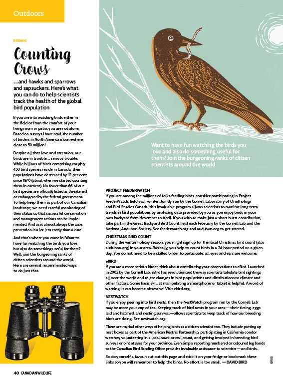 bird article