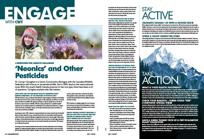 Engage Bulletin May 2017