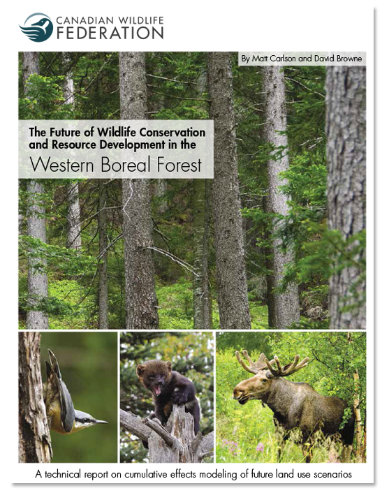 Western Boreal Forest Report Cover