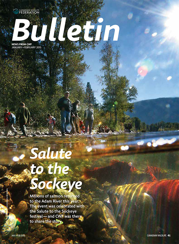 Bulletin cover with photo of Salmon