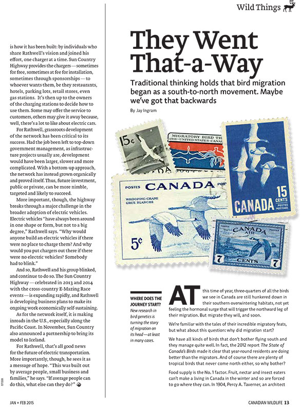 Article image with illustrations of postcards