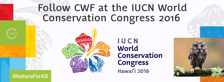 IUCN world conservation congress 2016 header