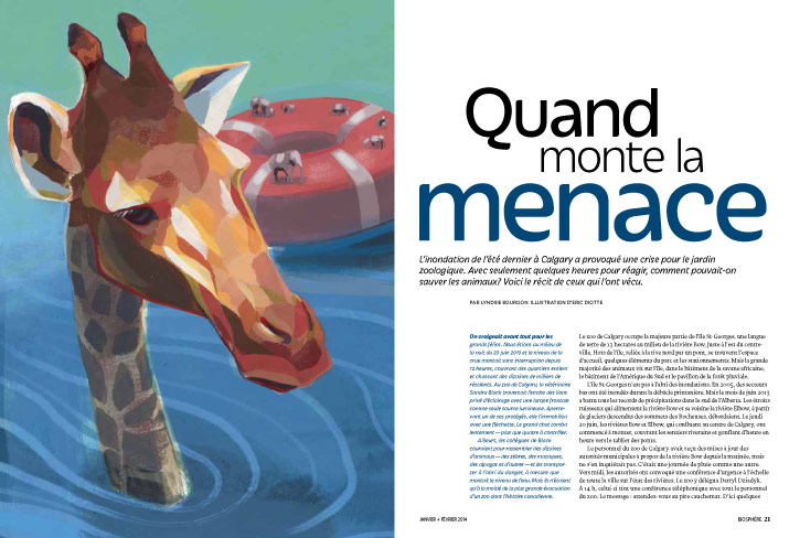 Article image with illustration of giraffe nearly under water