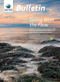 CWF bulletin cover with photo of shoreline
