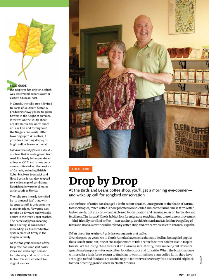 Article image with photo of owners of the Birds and Beans Coffee Shop