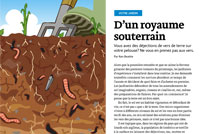 Article image with illustration of earth worms under the soil
