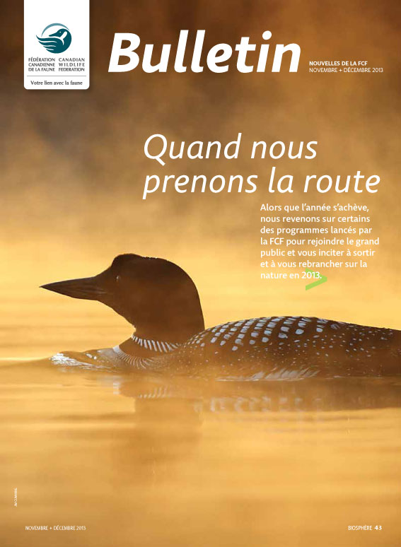 CWF bulletin cover with photo of a loon