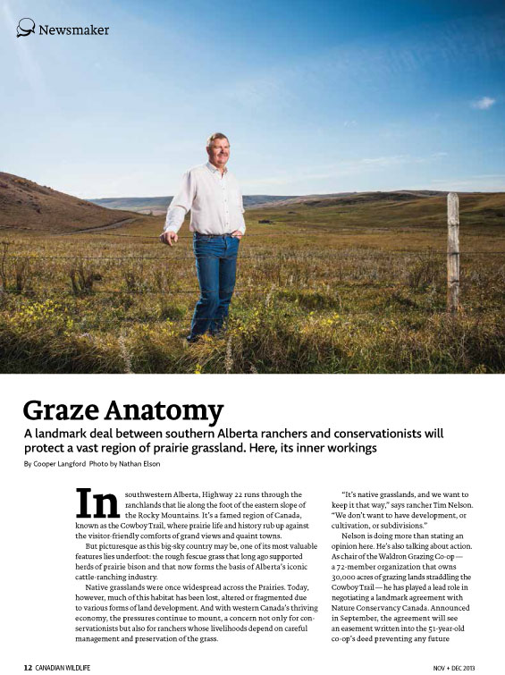 Article image of man standing in a prairie field