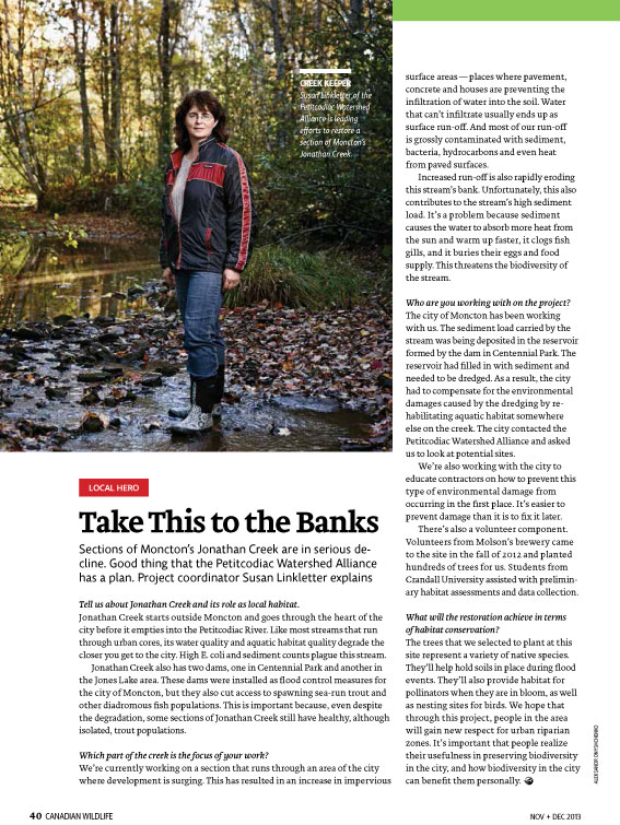 Article image with photo of Jonathan creek