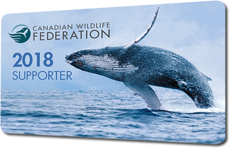 CWF 2018 Supporter Card