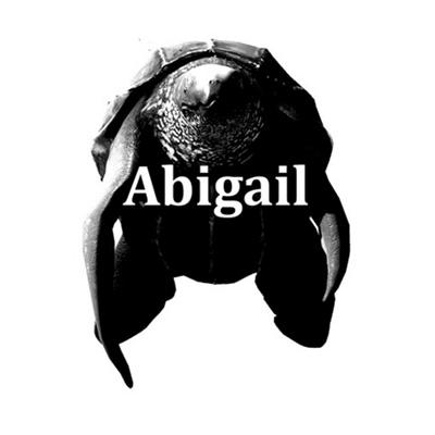trigger abigail turtle race
