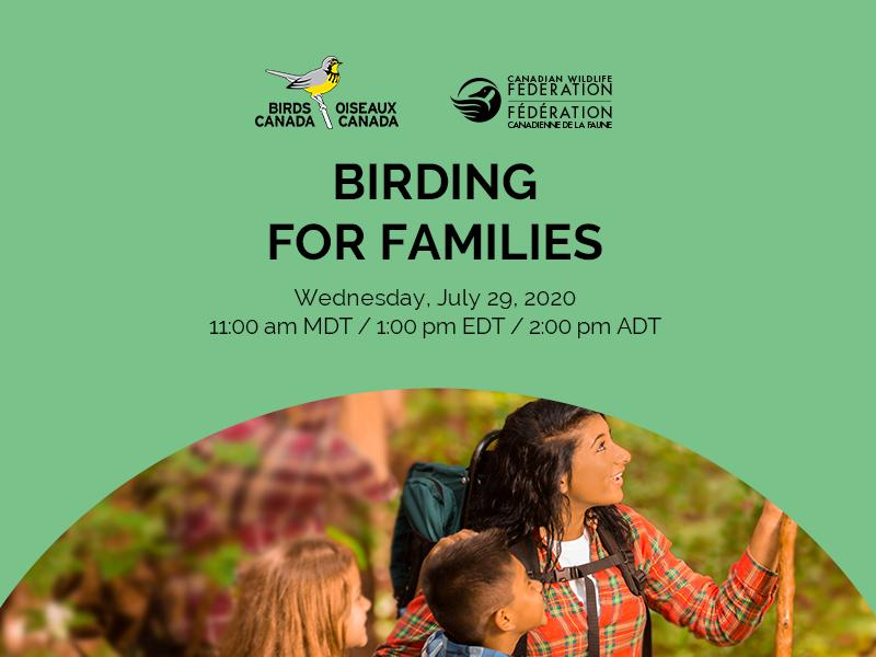 birding for families webinar header