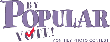 By Popular Vote! logo