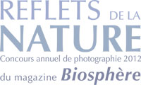 Reflections of nature logo in french