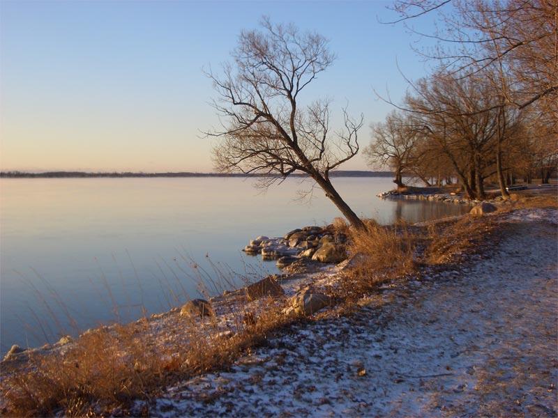 Novembre 2009 : Captez le froid