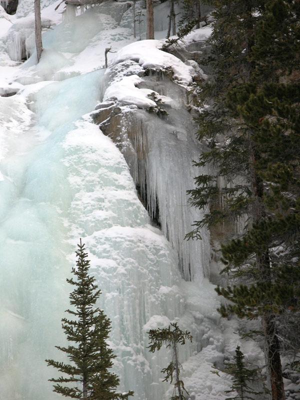 Janvier 2011 : Le froid sur la pellicule