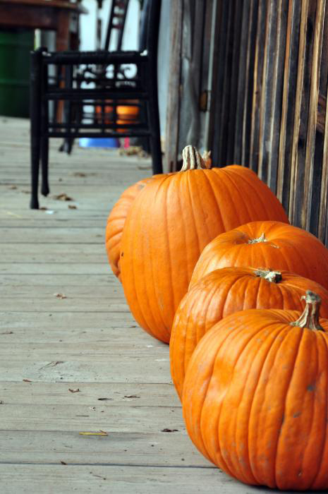 October 2009: Black & Orange