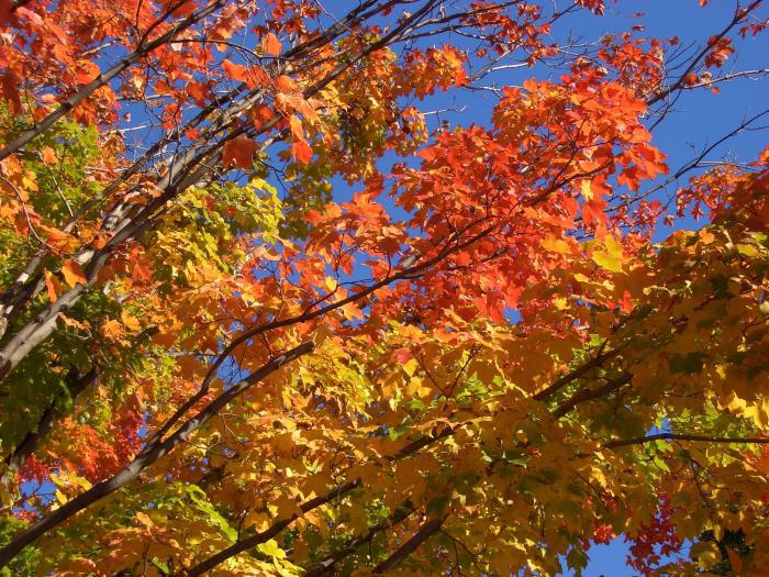 Septembre 2009 : Le changement des saisons