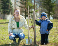 tree day 200