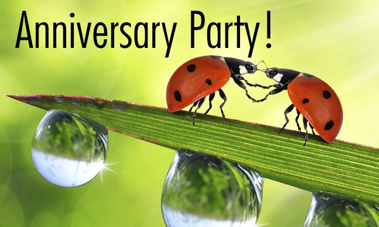 anniversary header ladybug