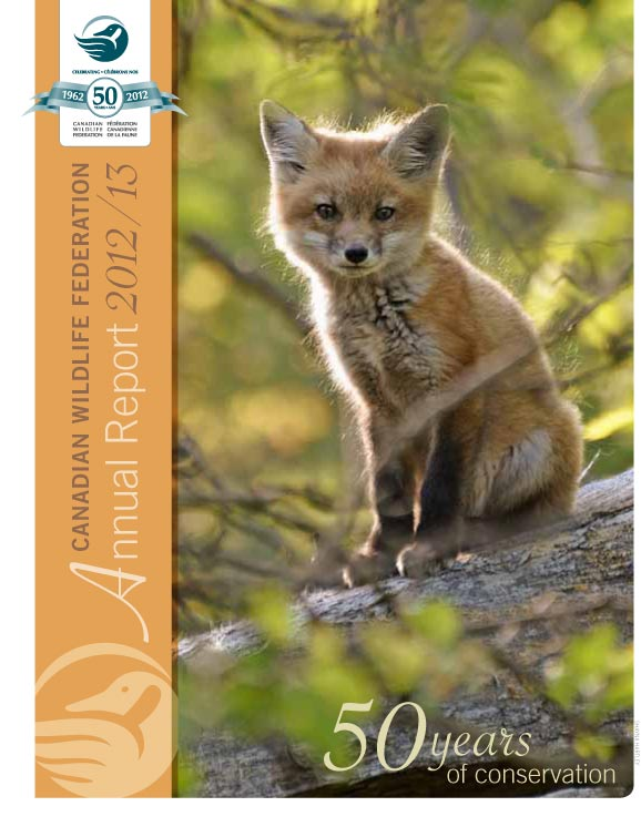 2012- 2013 report cover with a fox on it
