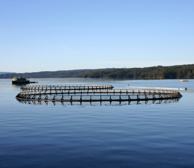 aquaculture water