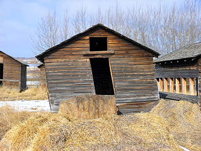 Wooden barn falling apart