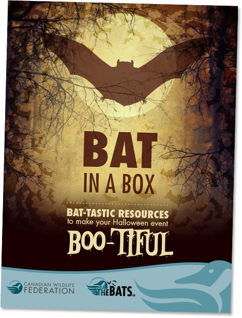 Bat in a box poster