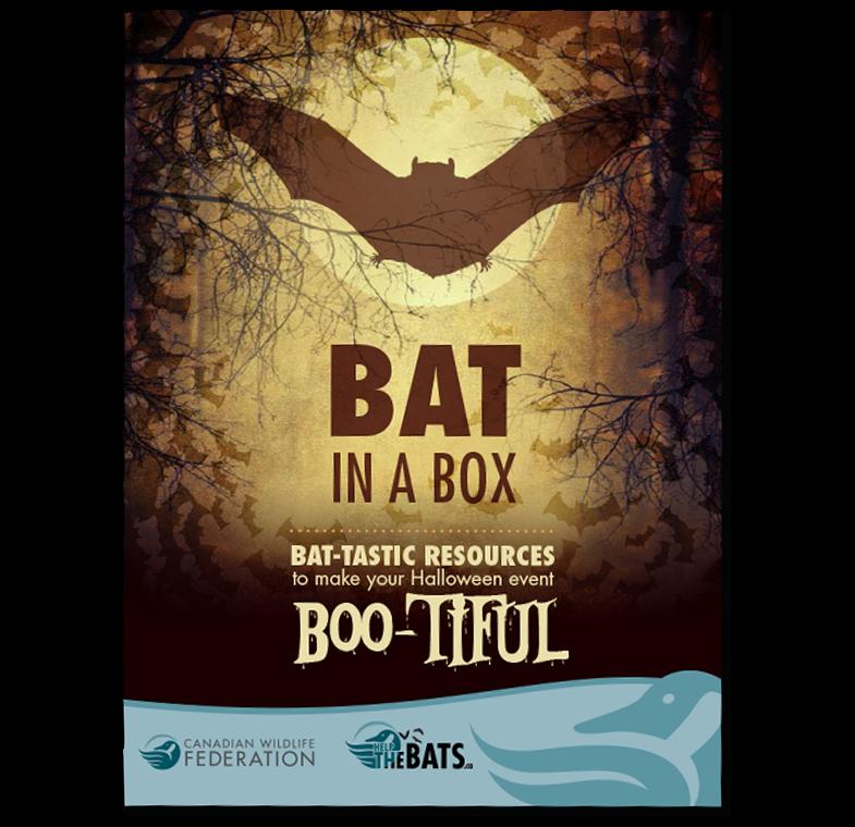 Bat in a box poster