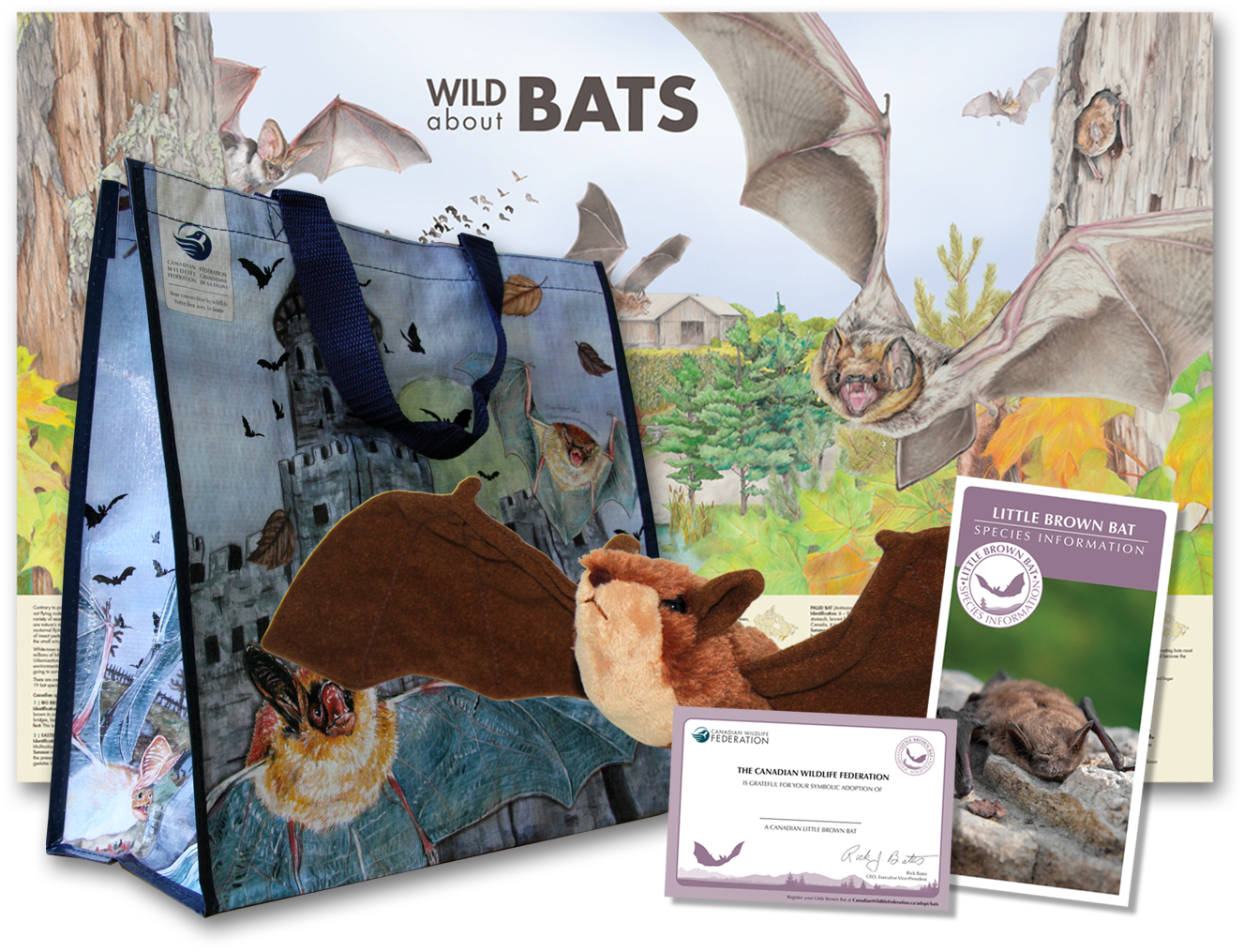 batty bundle