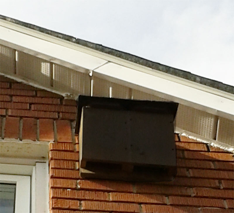 Bat house installed on house