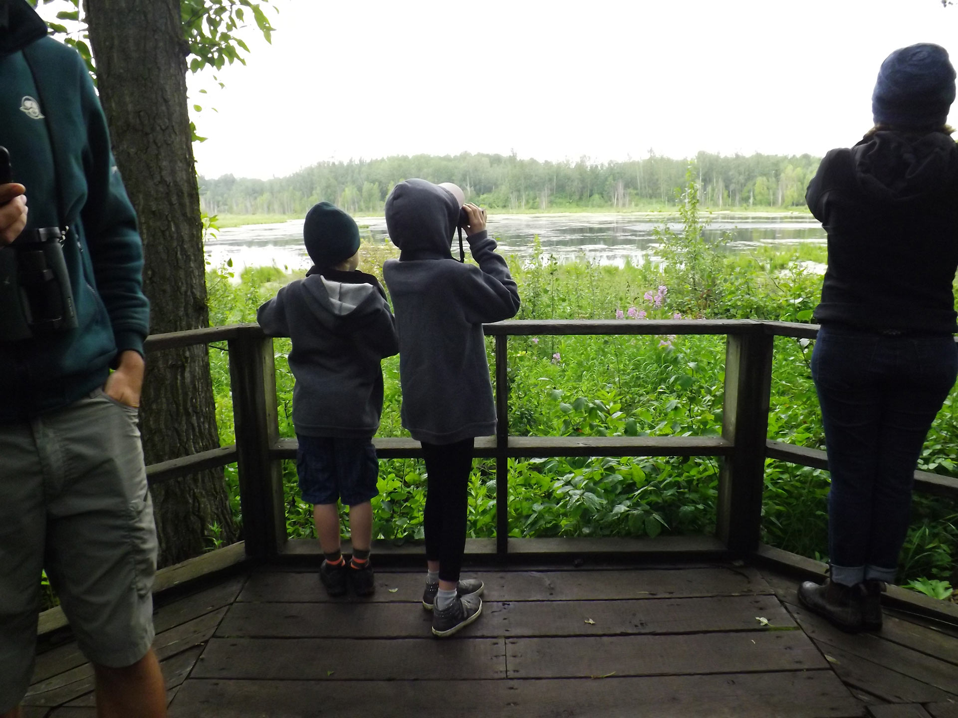 Birdwatching at dawn with some committed conservationist kids
