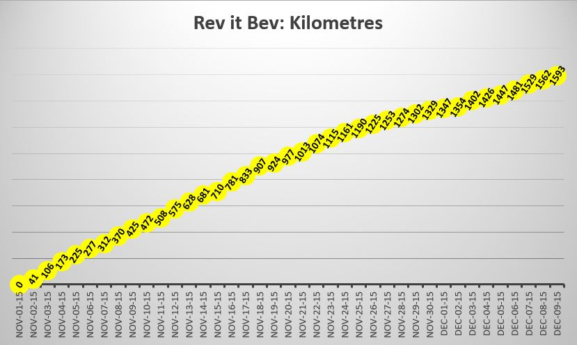 Rev It Bev's kilometres swam graph