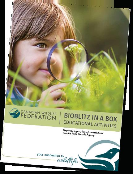 Bioblitz in a box poster