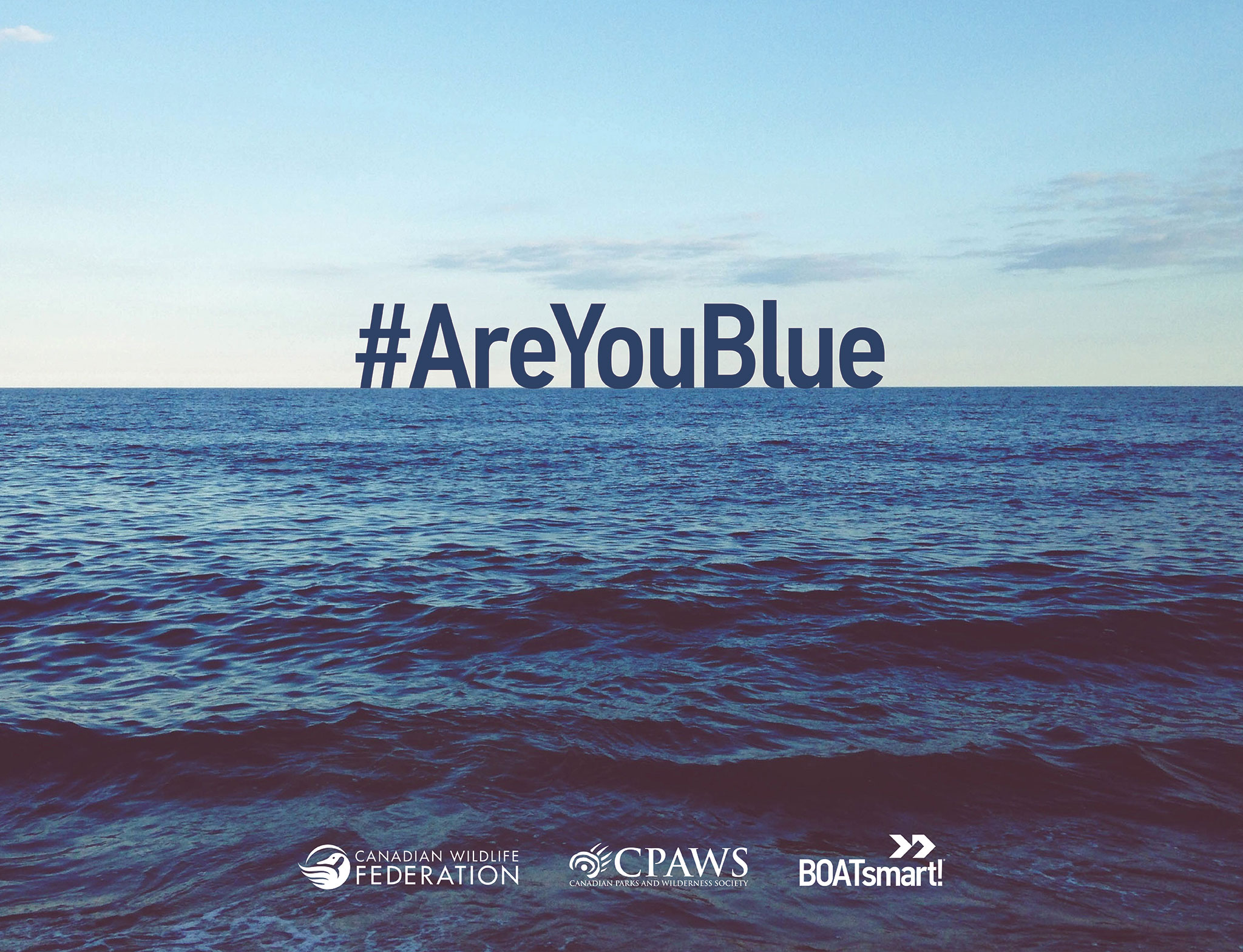 Are You Blue meme image