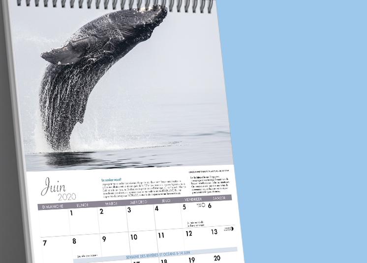 calendar mockup in-situ