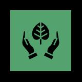 leaf hand icon