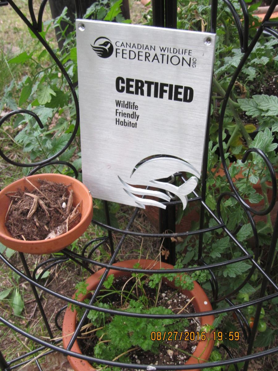 black t metal sign on metal stand herb